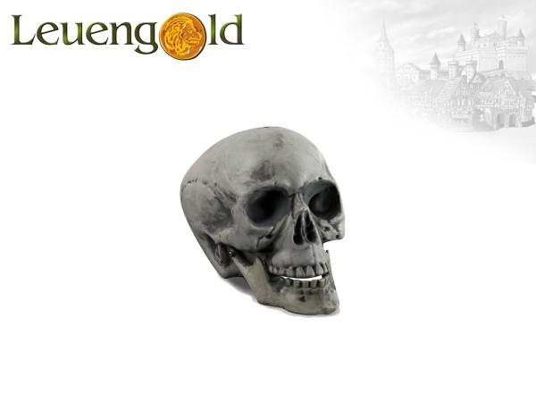 Schädel für Horror & Halloween Events