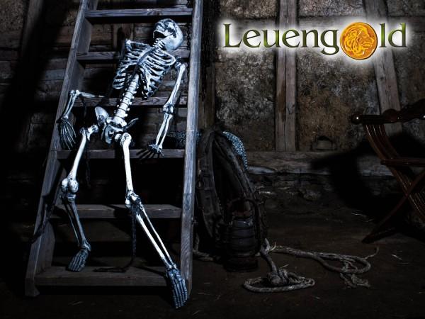 Komplettes Skelett